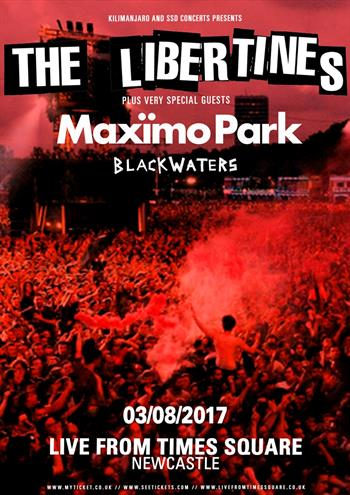 The Libertines UK Newcastle show 2017